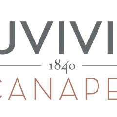 DUVIVIER CANAPÉS - FURNISHING - DECORATION