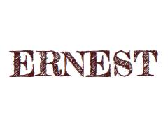 ERNEST WALLPAPERS / PAPIERS PEINTS - FURNISHING - DECORATION