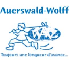 Fer Heller Auerswald-Wolff - ELECTROMENAGER - IMAGE & SON - HIGH TECH