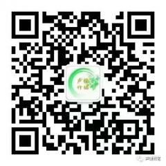 Anshun Shengjian Bamboo Weaving Artwork Co.Ltd - DECORATIVE OBJECTS