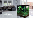 AQUARIUM BAR COUNTER - <p>We will present on the fair our novelty 2018 which will be a bar counter aquarium industrial design to integrate into the interior in which the kitchen is in the same room as the living room, dining room. Come and find out !</p>