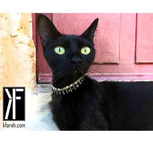 KFarah Kitty || Mamamia - Kitty Necklace 100% handmade in crystal pearls.