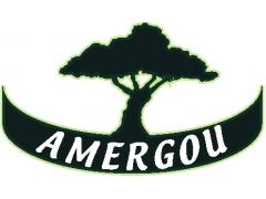 Amergou - Huile d'Argan bio -