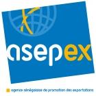 Agence Sénégalaise de Promotion des Exportations - DECORATIVE OBJECTS